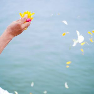 散骨で海に花びらを撒く老婆の手