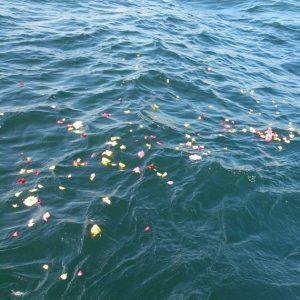 海にまかれて漂う花びら