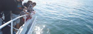 快晴の東京湾で散骨を行う家族