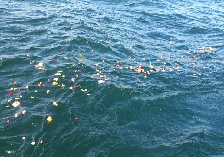 海面を漂う色とりどりの花びら
