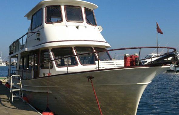 係留された中型クルーザーのルナフェスタ号