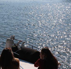 クルーザーの前方デッキでくつろぐ2名の女性と光を反射する海面