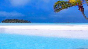 白い砂浜と青い海とヤシの木