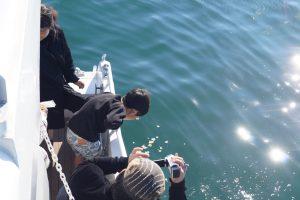 散骨セレモニーで東京湾に花びらを撒く子供と見守る大人