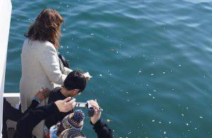 遺骨を東京湾に散骨する女性と見守る家族