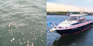 散骨セレモニーで献花され海に漂う花びらと小型クルーザー