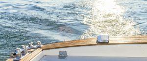 クルーザーの起こす波で煌めく水面