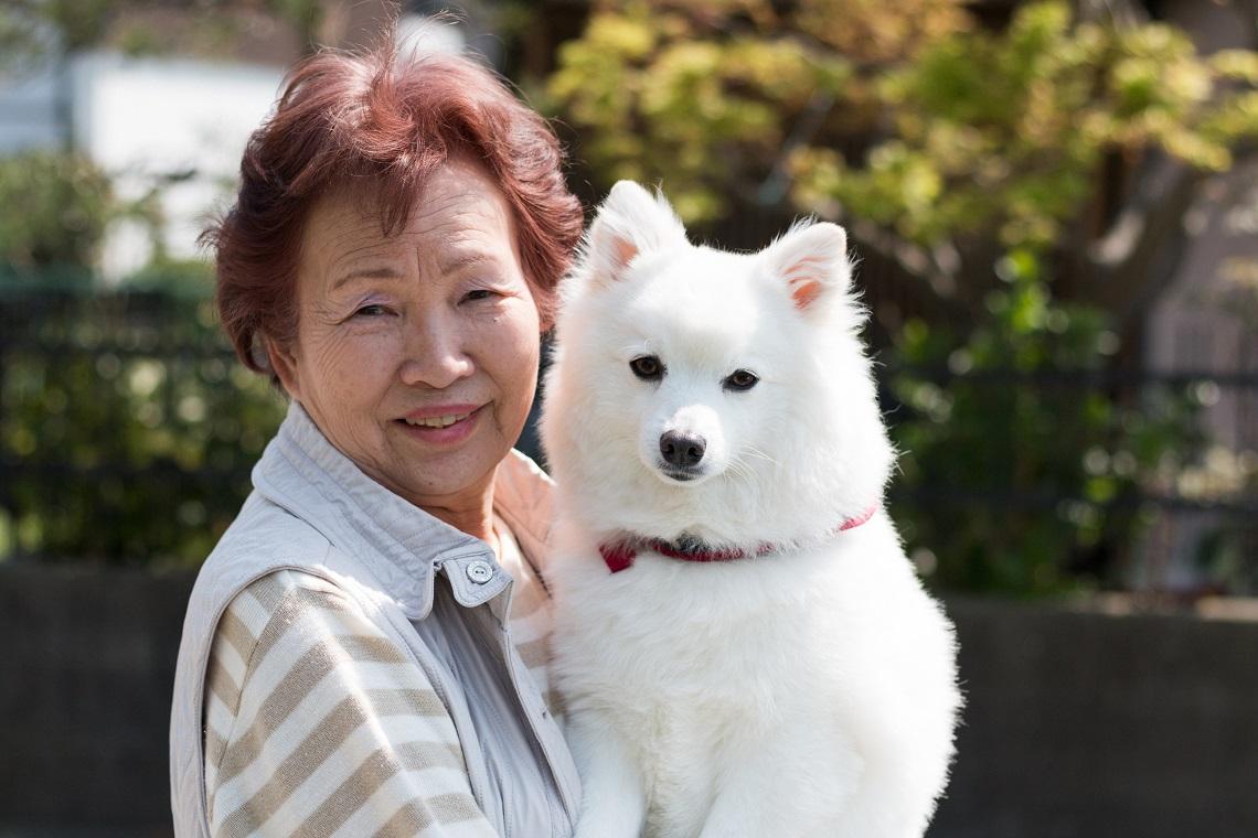 女性に抱き上げられた大型犬