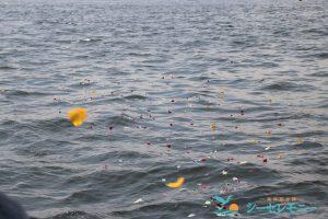 散骨セレモニーで献花され海に漂う美しい花びら