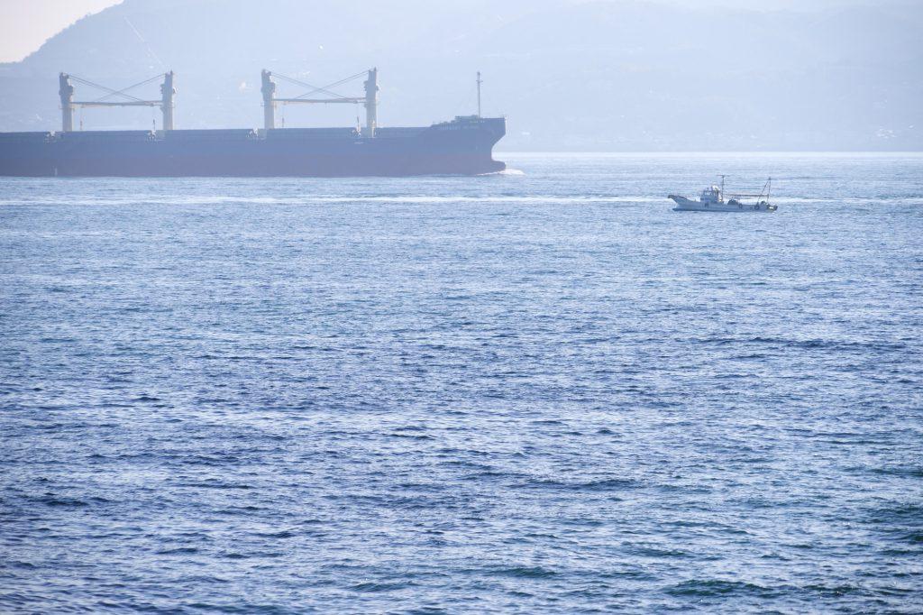 広大な海を航海する船