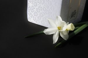 白い花と骨壺