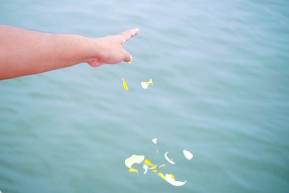 花びらの浮いた海を指さしている