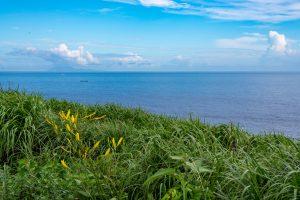 緑の丘の上から見る海