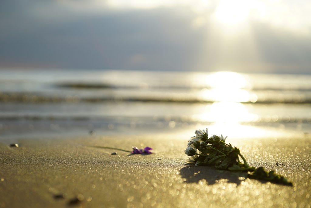 波打ち際に置かれた花