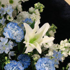白や青の花