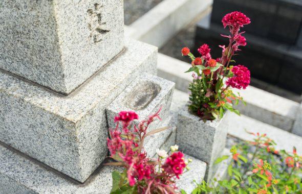 花が手向けられたお墓