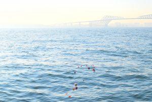 散骨セレモニーで献花され東京湾を漂う花びら