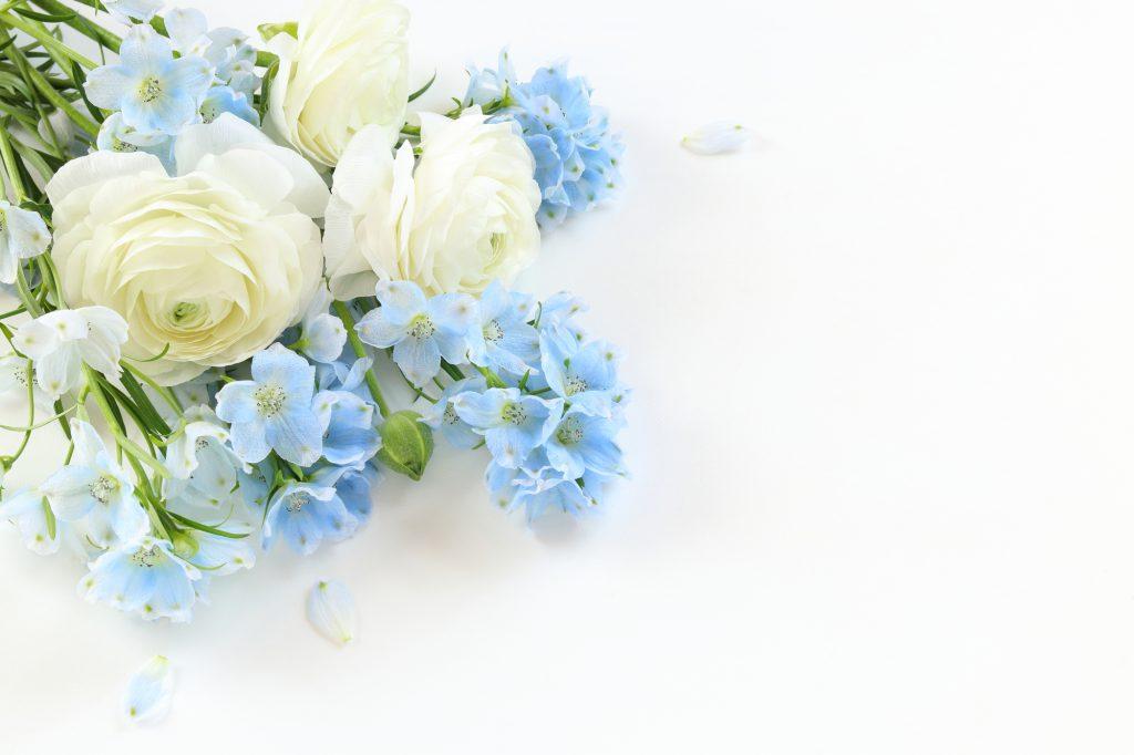 青と白の切り花
