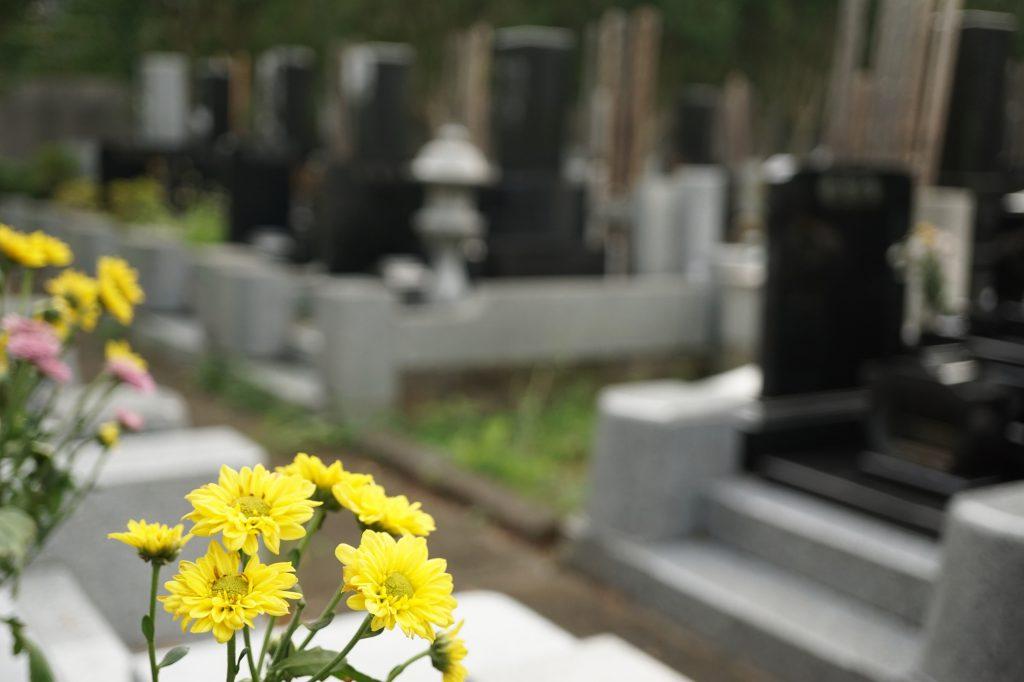 黄色い花が手向けられた墓地