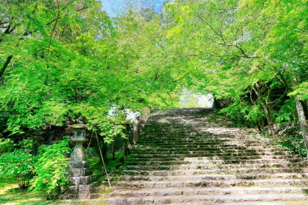 菩提寺(ぼだいじ)とのトラブル お寺の階段