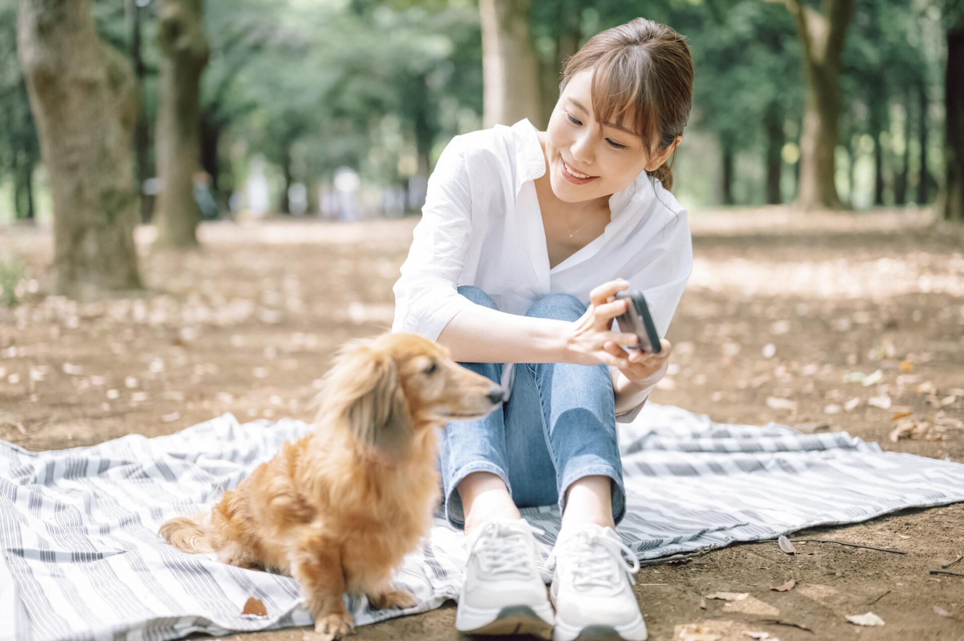 女性と ミニチュアダックスフンドが公園で遊んでいる