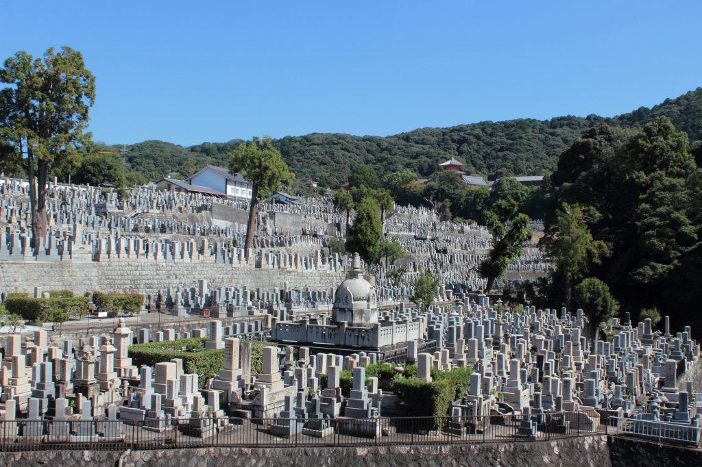 高台から見える墓所