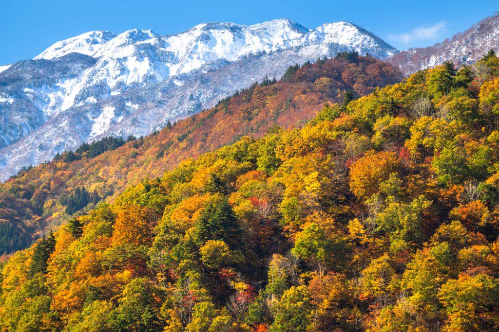 紅葉と山々