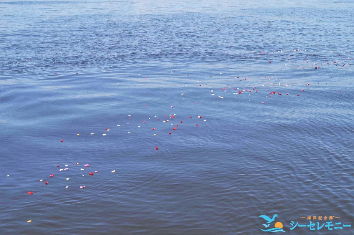 散骨したお花とお骨が海に漂う